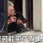 上海市,摄影萌新,求脱团,求约展,求拍肩,