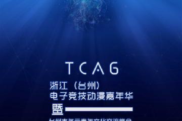 浙江(台州)第二届电子竞技·动漫嘉年华