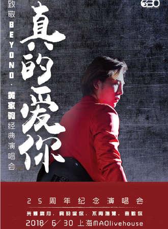 真的爱你—致敬BEYOND·黄家驹25周年纪念演唱会-无锡站0728