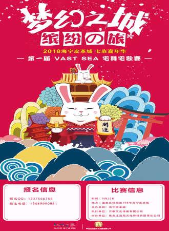 2018海宁皮草城七彩嘉年华暨第一届VAST SEA宅舞宅歌赛