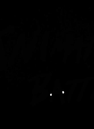 超次元舞斗会AnimateBattle