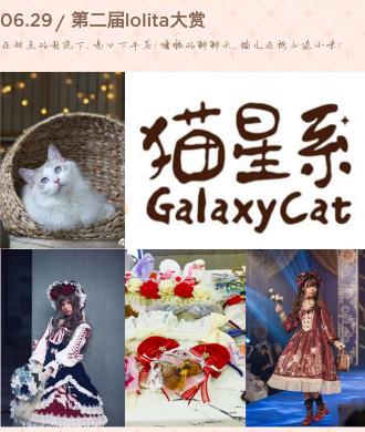 猫星系苜蓿联名茶会