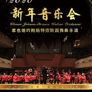 维也纳约翰•施特劳斯圆舞曲乐团武汉新年音乐会12.28插图