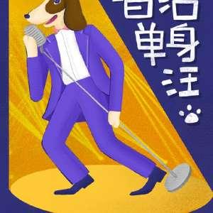 """11.11光棍节""""唱给单身汪""""主题演唱会-长沙站插图"""