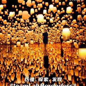 EPSON teamLab无界美术馆:teamLab Borderless Shanghai插图