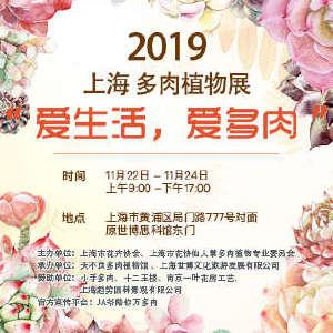 2019上海多肉植物展插图