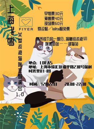 上海飞鸟关爱流浪猫咪主题演出 1.0