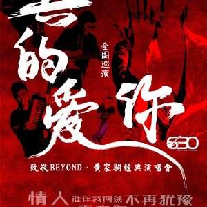 真的爱你-2020致敬BEYOND·黄家驹演唱会 瞬间穿越那些光辉岁月-上海站插图