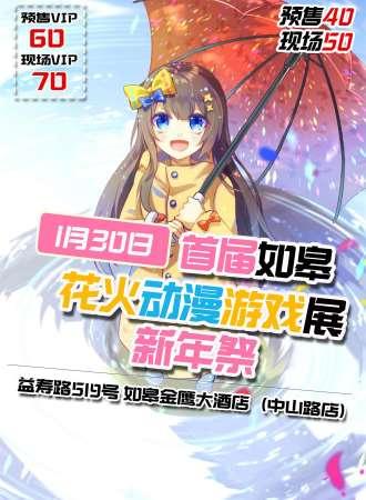 如皋首届花火动漫游戏展新年祭