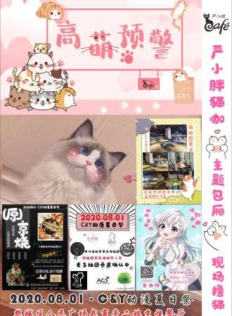 C&Y动漫夏日祭