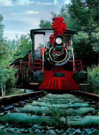 西青郊野公园亲子观光小火车