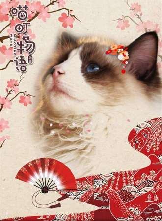 喵町物语-猫咖09-11