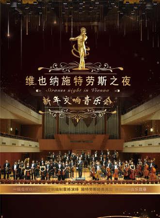 《维也纳施特劳斯之夜》新年交响音乐会 南京站12.31