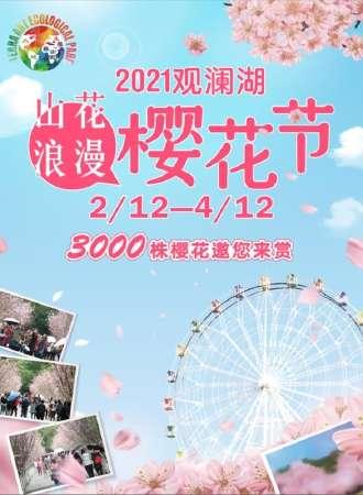 2021深圳观澜湖第五届樱花节