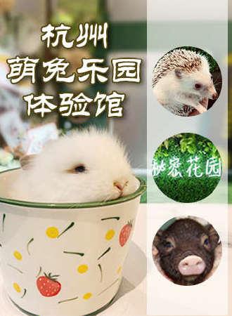 welcome to Hangzhou 萌兔乐园体验馆