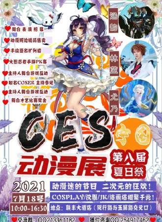 CES宁国第八届夏日祭