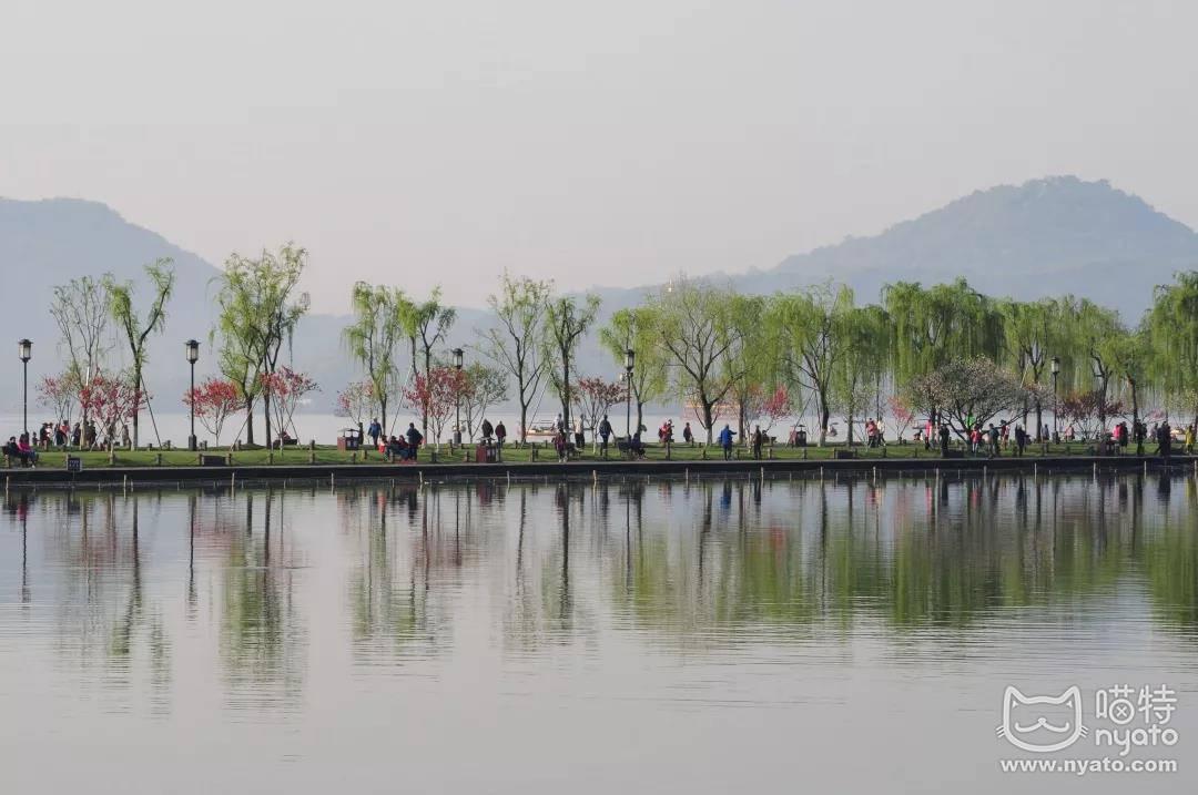 在杭州美到想翘班的季节,国漫君来霸屏了! 漫展 第5张